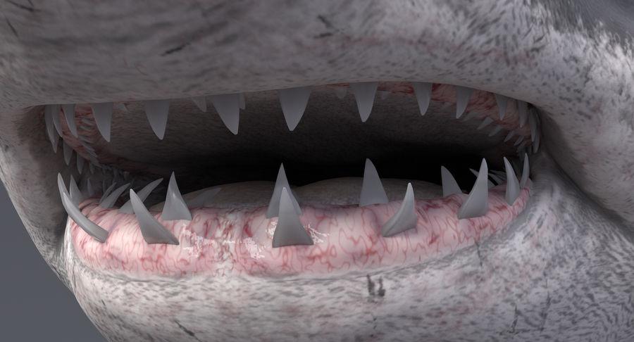 Grande squalo bianco royalty-free 3d model - Preview no. 12
