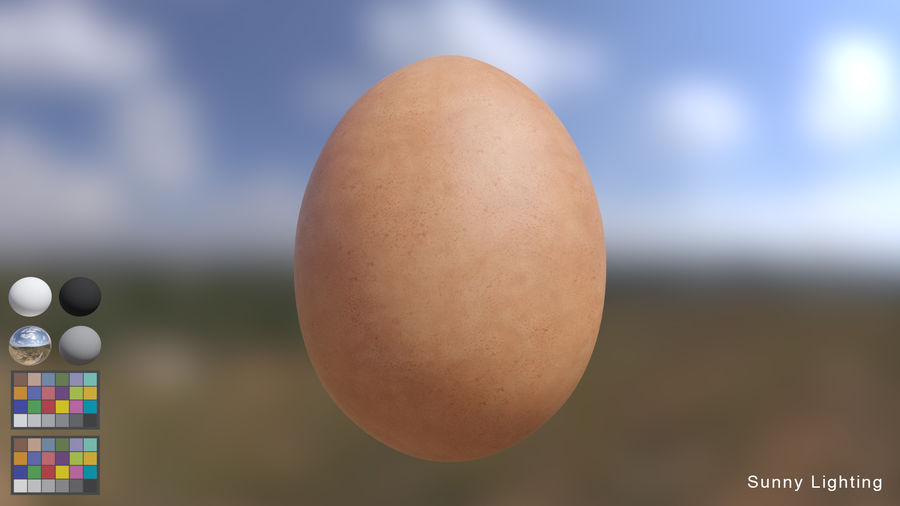 Brown Egg royalty-free 3d model - Preview no. 3
