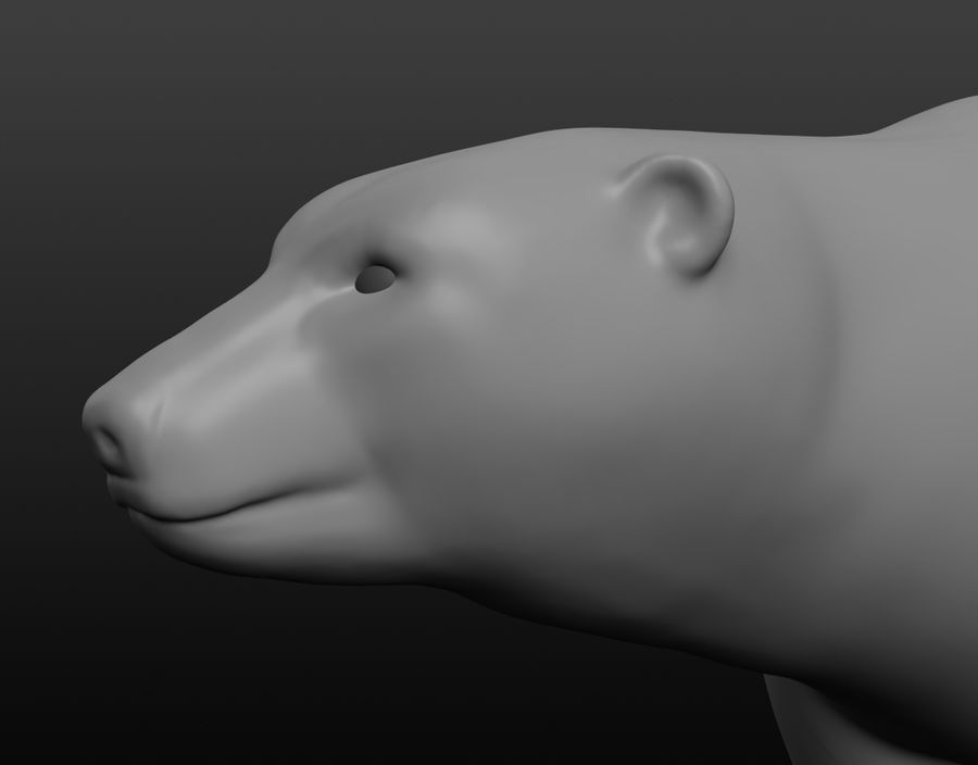 Urso polar royalty-free 3d model - Preview no. 14