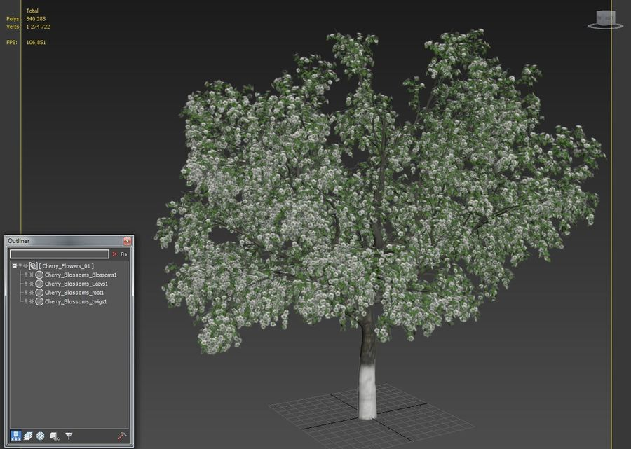 Cherry Blossom royalty-free 3d model - Preview no. 4