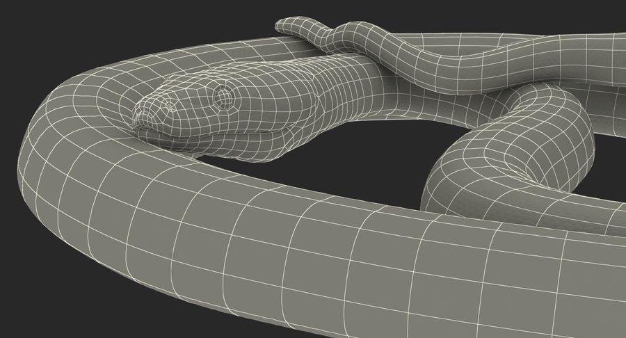 Pose enroulée de serpent vert python royalty-free 3d model - Preview no. 22