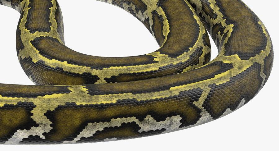 Pose enroulée de serpent vert python royalty-free 3d model - Preview no. 12