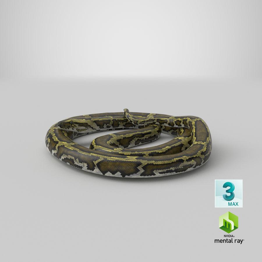 Pose enroulée de serpent vert python royalty-free 3d model - Preview no. 29
