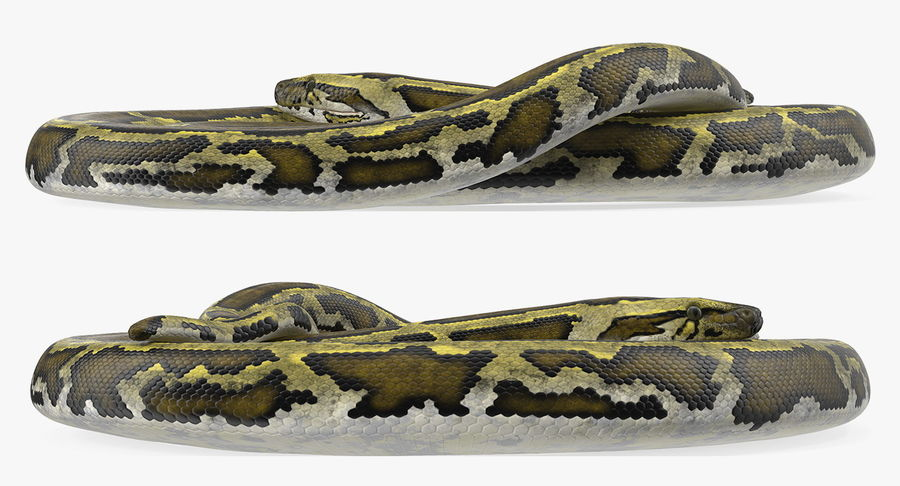 Pose enroulée de serpent vert python royalty-free 3d model - Preview no. 6
