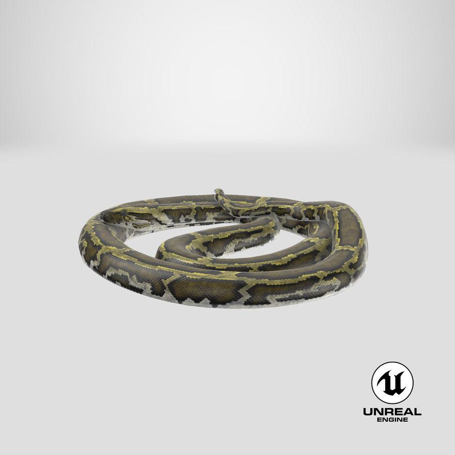 Pose enroulée de serpent vert python royalty-free 3d model - Preview no. 27