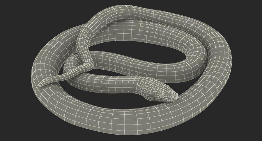 Pose enroulée de serpent vert python royalty-free 3d model - Preview no. 21