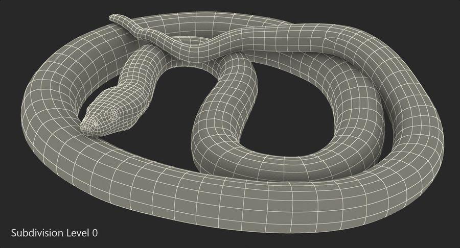 Pose enroulée de serpent vert python royalty-free 3d model - Preview no. 14