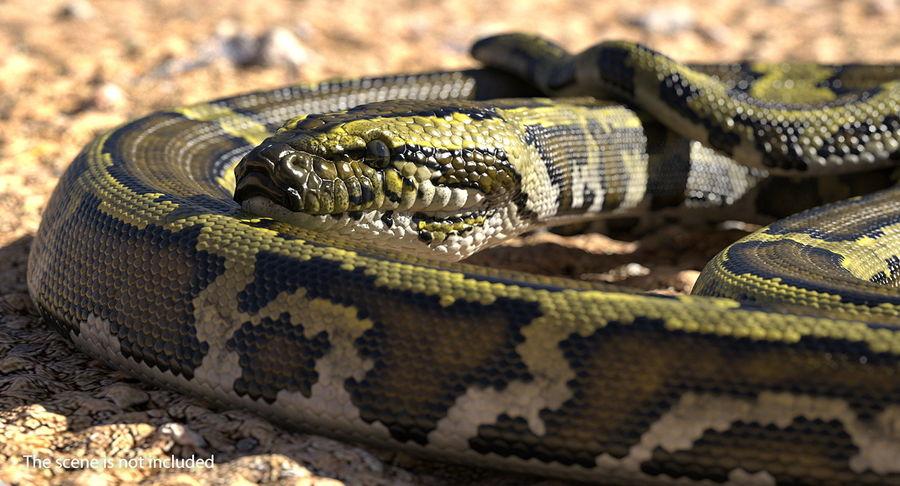 Pose enroulée de serpent vert python royalty-free 3d model - Preview no. 4
