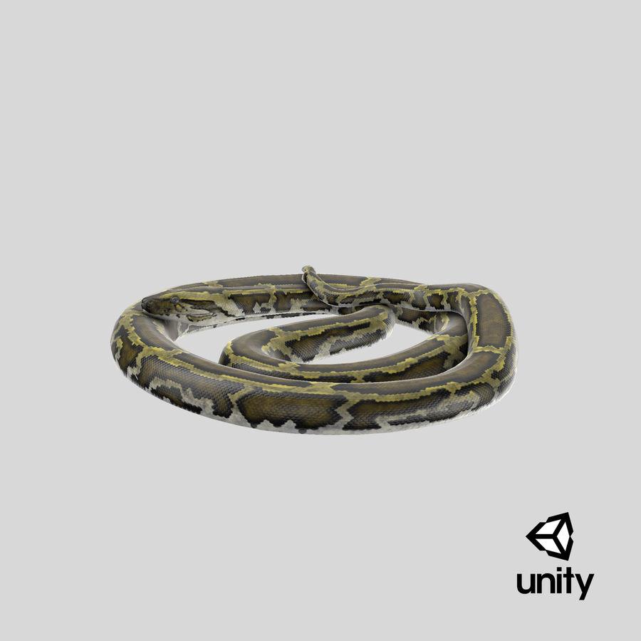 Pose enroulée de serpent vert python royalty-free 3d model - Preview no. 26