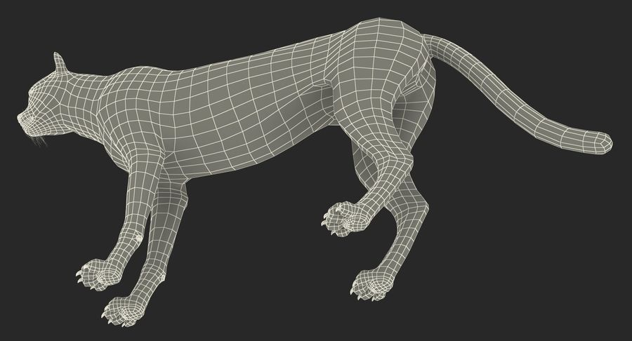 African Animals 3D Models Collection 3 royalty-free 3d model - Preview no. 40
