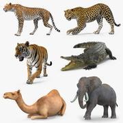 装備されたアフリカの動物3Dモデルコレクション3 3d model