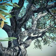 big tree2 3d model