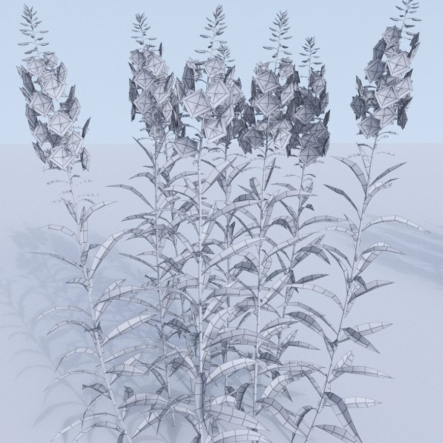 Fireweed set. Chamaenerion angustifolium royalty-free 3d model - Preview no. 5