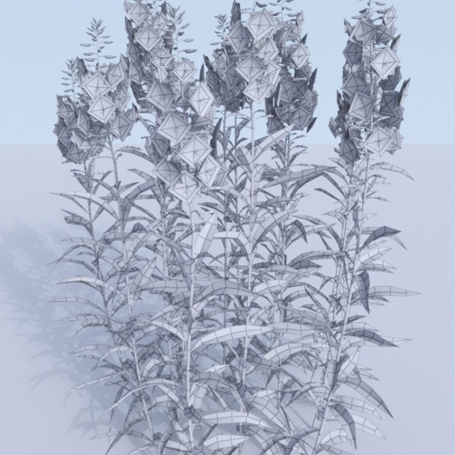 Fireweed set. Chamaenerion angustifolium royalty-free 3d model - Preview no. 3