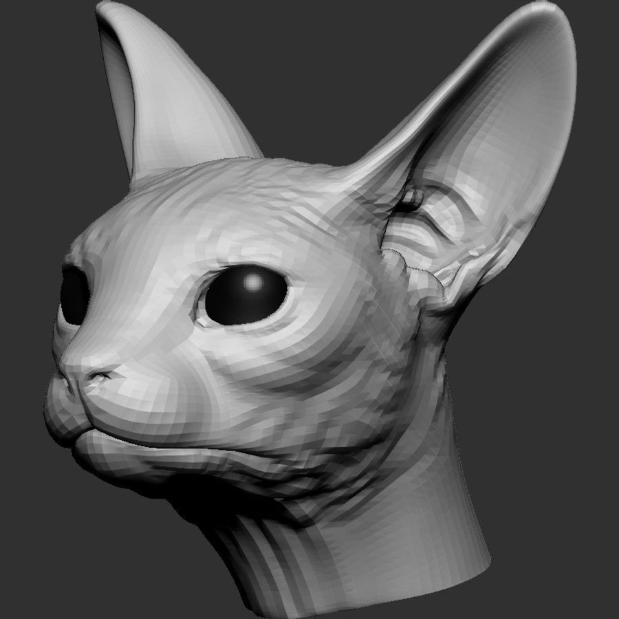 Sphynx Cat Head Base 2019 royalty-free 3d model - Preview no. 1