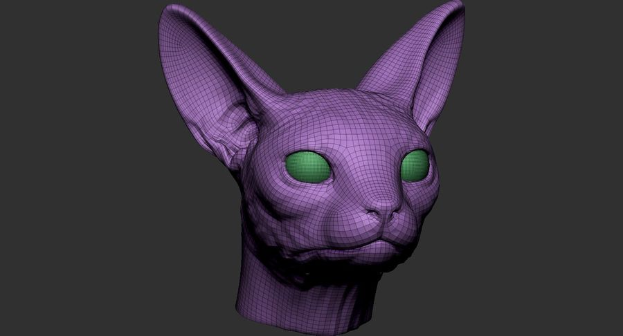 Sphynx Cat Head Base 2019 royalty-free 3d model - Preview no. 10