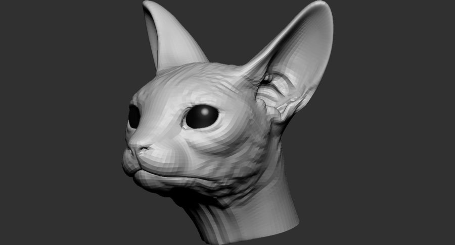 Sphynx Cat Head Base 2019 royalty-free 3d model - Preview no. 2
