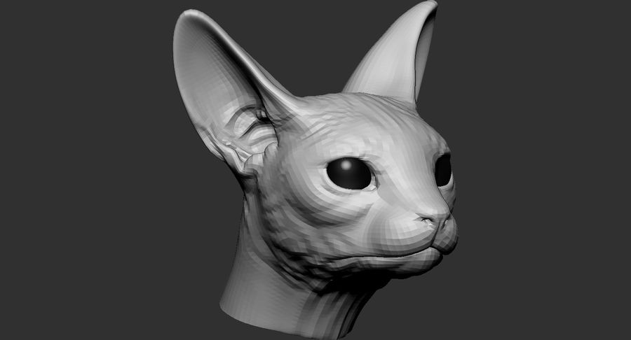 Sphynx Cat Head Base 2019 royalty-free 3d model - Preview no. 4