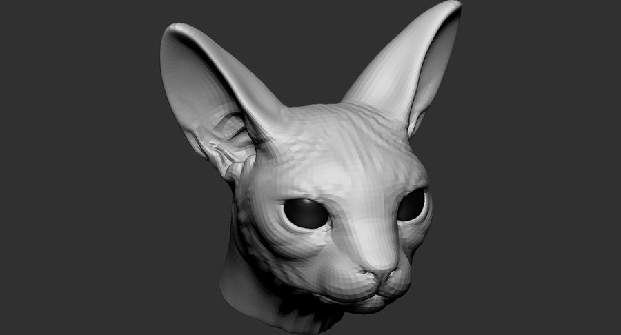Sphynx Cat Head Base 2019 royalty-free 3d model - Preview no. 8