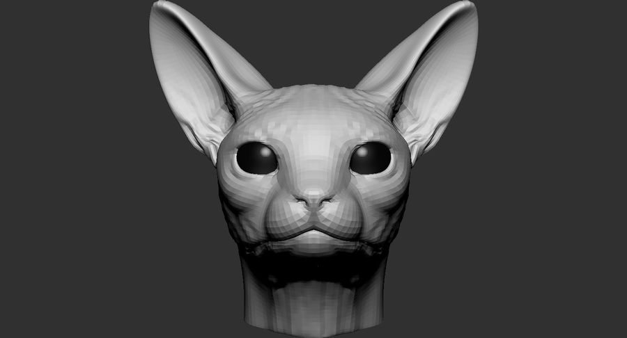 Sphynx Cat Head Base 2019 royalty-free 3d model - Preview no. 3