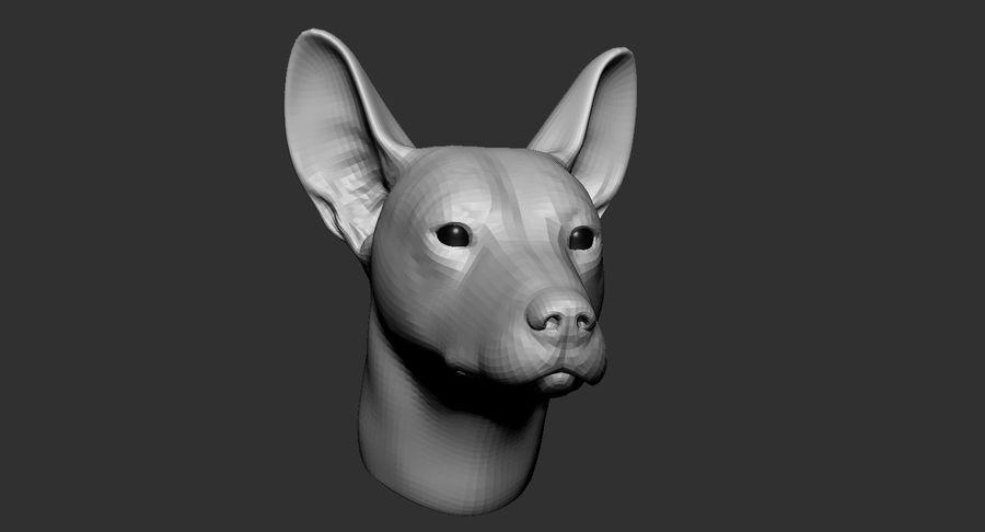 Köpek Başı Tabanı 2019 royalty-free 3d model - Preview no. 2