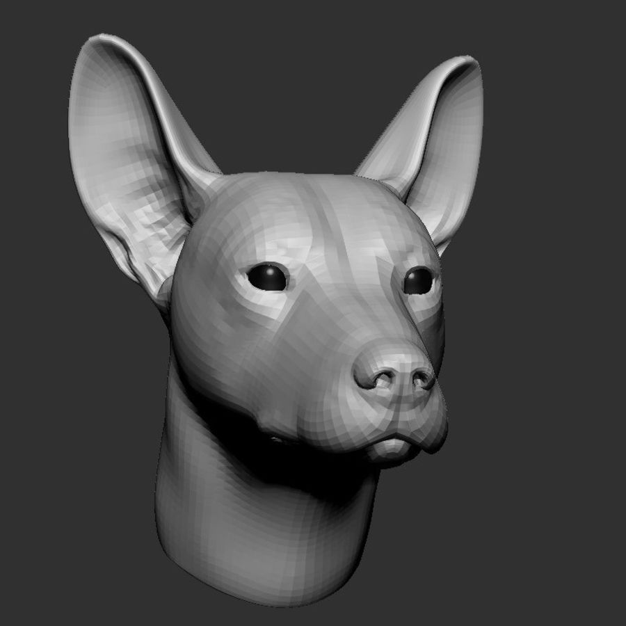 Köpek Başı Tabanı 2019 royalty-free 3d model - Preview no. 1