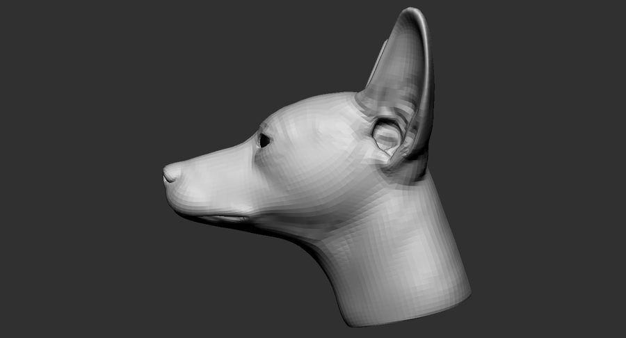 Köpek Başı Tabanı 2019 royalty-free 3d model - Preview no. 6