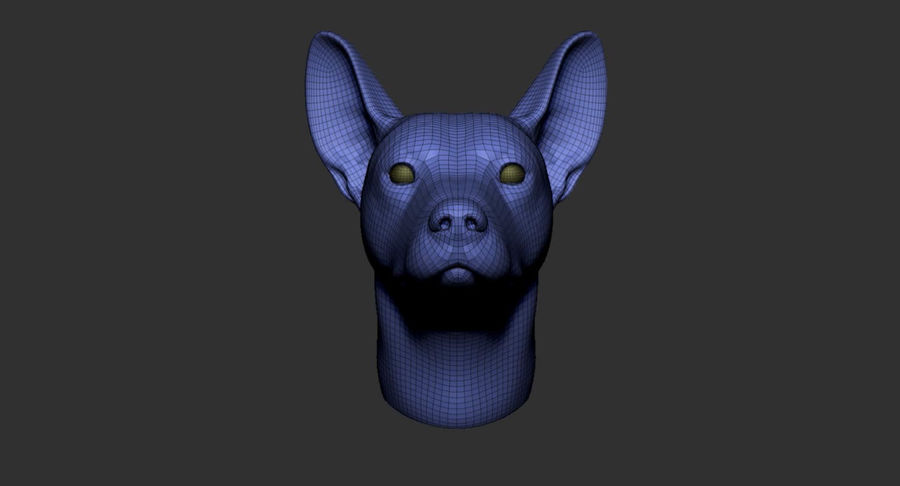 Köpek Başı Tabanı 2019 royalty-free 3d model - Preview no. 14