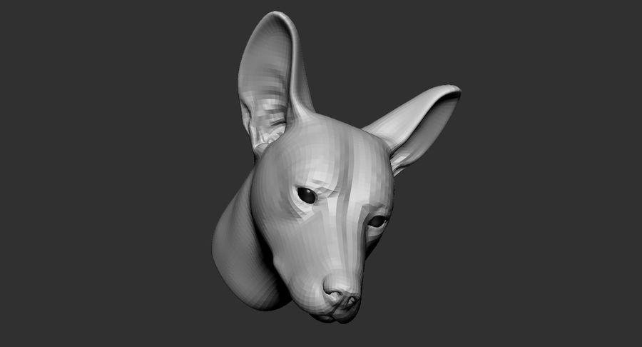 Köpek Başı Tabanı 2019 royalty-free 3d model - Preview no. 10