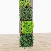 roślina 05 3d model