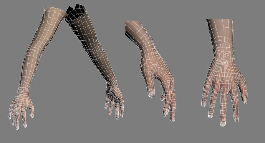 Female Arms royalty-free 3d model - Preview no. 7