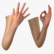 女性の腕 3d model
