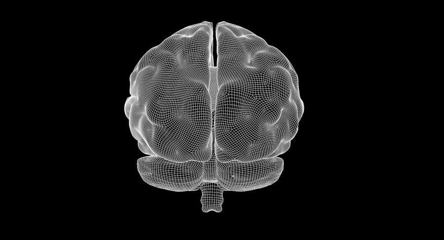 Brain Human Anatomy royalty-free 3d model - Preview no. 9