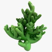 Coral modelo 3d