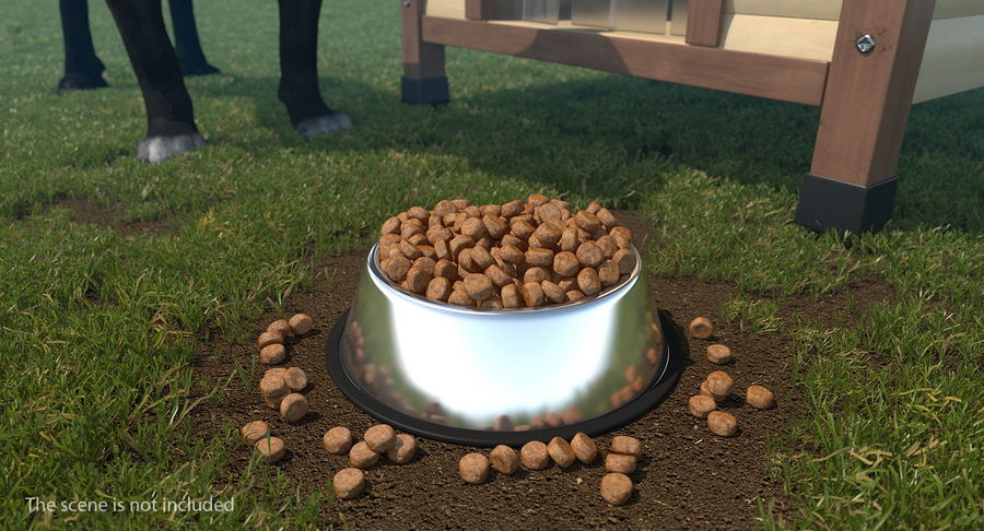 Dry Dog Food Stainless Steel Bowl royalty-free 3d model - Preview no. 3