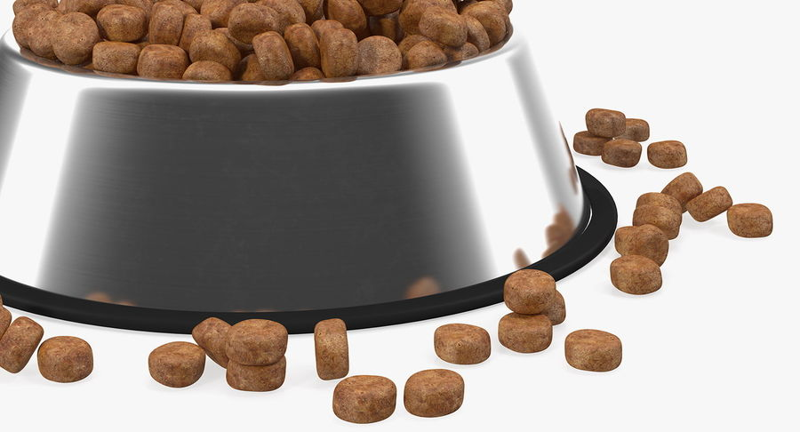 Dry Dog Food Stainless Steel Bowl royalty-free 3d model - Preview no. 8
