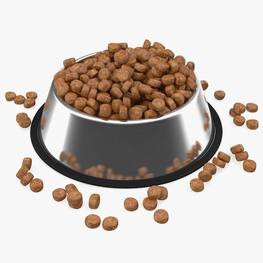 Dry Dog Food Stainless Steel Bowl royalty-free 3d model - Preview no. 1