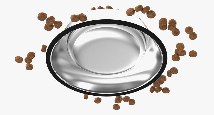 Dry Dog Food Stainless Steel Bowl royalty-free 3d model - Preview no. 12