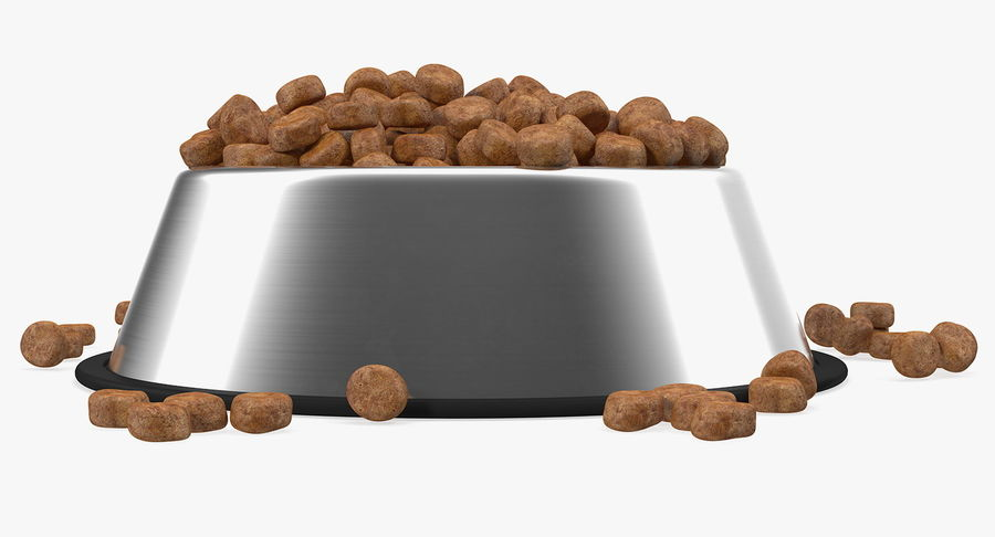 Dry Dog Food Stainless Steel Bowl royalty-free 3d model - Preview no. 5