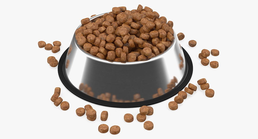 Dry Dog Food Stainless Steel Bowl royalty-free 3d model - Preview no. 2