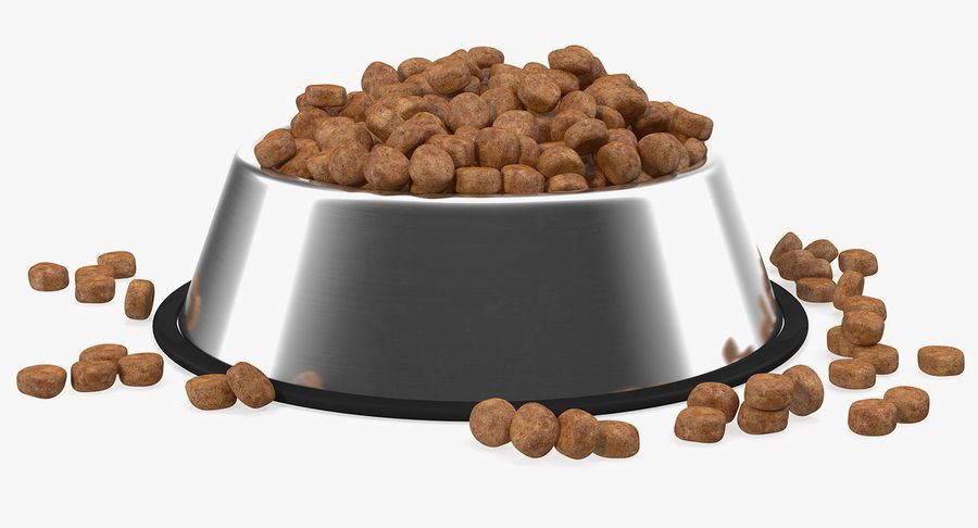 Dry Dog Food Stainless Steel Bowl royalty-free 3d model - Preview no. 4