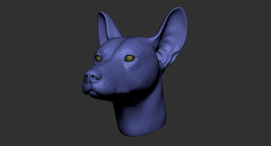 Mexican Hairless Dog Head 2019 royalty-free 3d model - Preview no. 14
