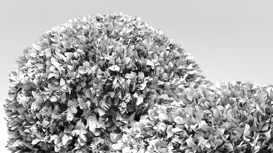 Boxwood Trees royalty-free 3d model - Preview no. 10