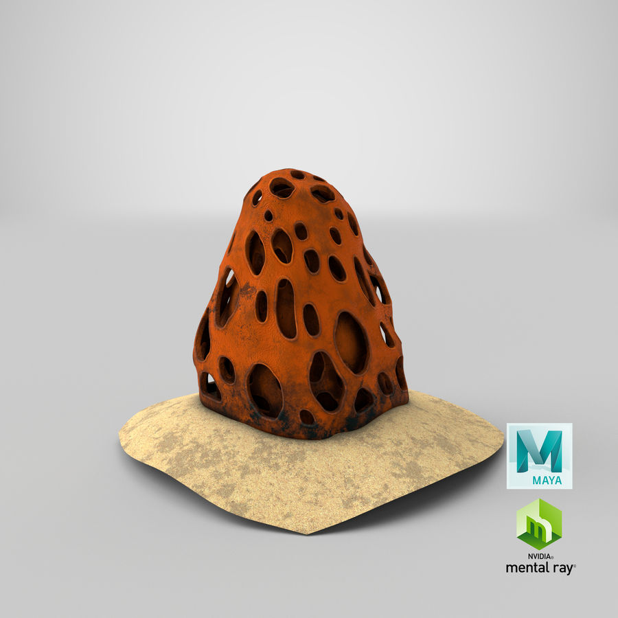 Coral V1 royalty-free 3d model - Preview no. 24