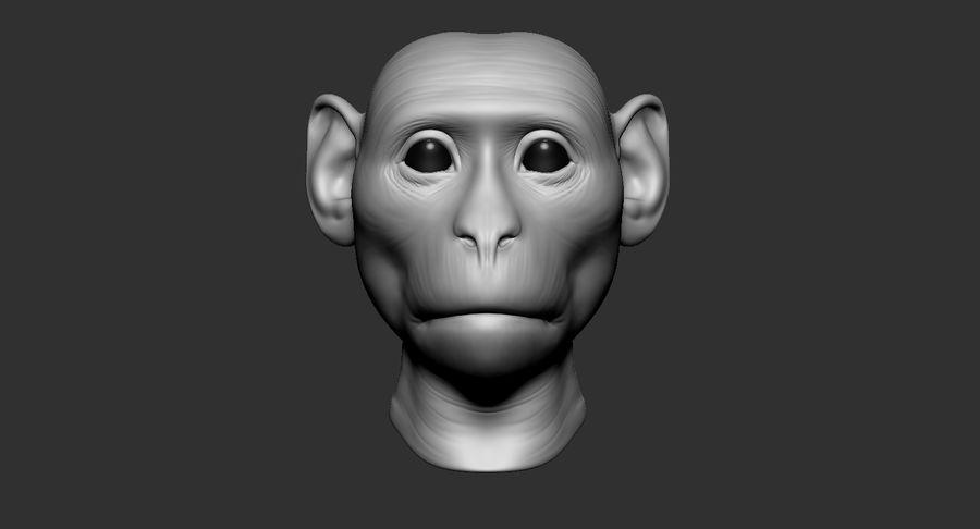 Cabeça de macaco 2019 royalty-free 3d model - Preview no. 3