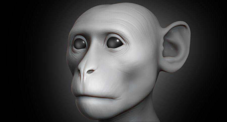 Cabeça de macaco 2019 royalty-free 3d model - Preview no. 2