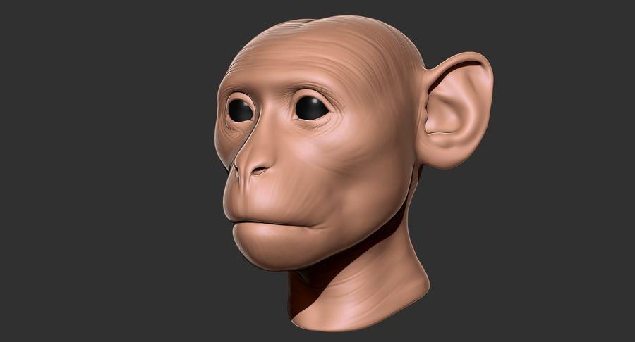 Cabeça de macaco 2019 royalty-free 3d model - Preview no. 14
