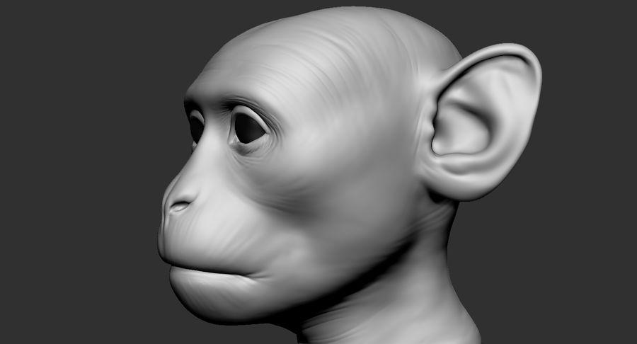 Cabeça de macaco 2019 royalty-free 3d model - Preview no. 6
