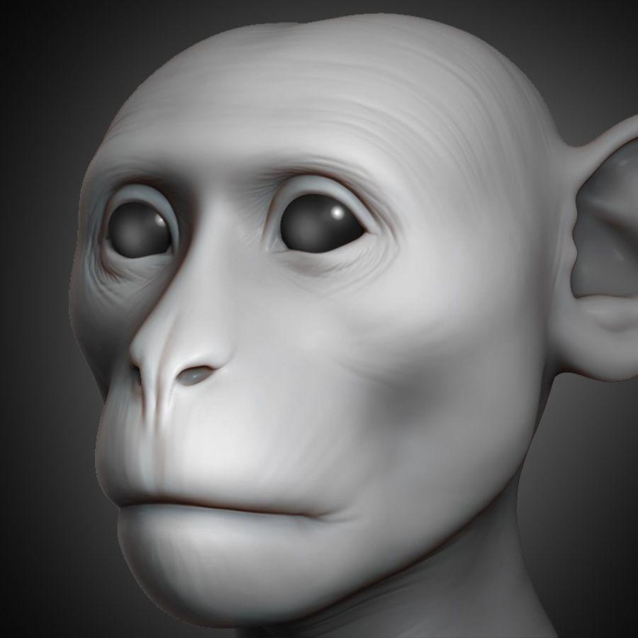 Cabeça de macaco 2019 royalty-free 3d model - Preview no. 1