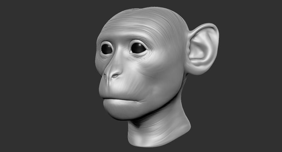 Cabeça de macaco 2019 royalty-free 3d model - Preview no. 15